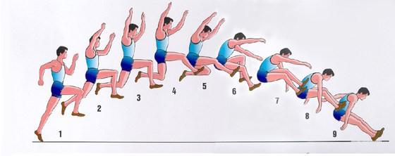 THPT Nguyễn Văn Cừ - Nội dung nhảy xa (bật xa tại chỗ) - Thể dục k11